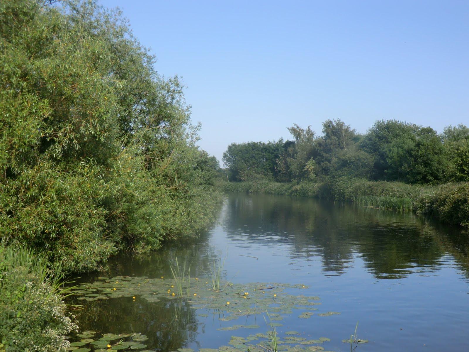 CIMG2012 River Medway