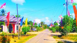 Umbul-umbul Terlihat di  Sepanjang Jalan Desa Siabu, Antusias Masyarakat  Sambut Kepulangan Sang Juara Dunia Leani