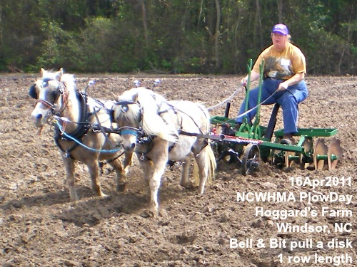 Bell and Bit pulling a disk at NCWHMA plow day event