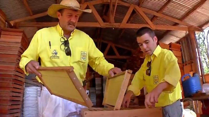 apicultura-deciolandia-4-1024x576