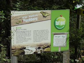 Photo: ... schaue ich mir näher an: Tut gut - Wanderweg Puchberg