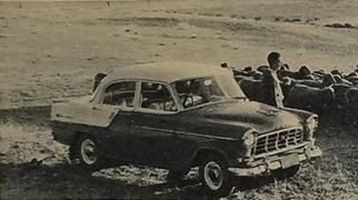 Holden 1960