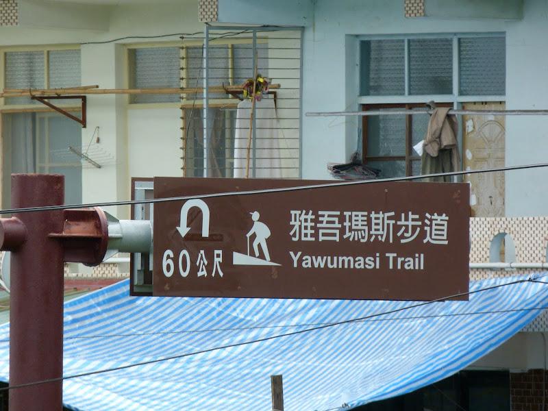 TAIWAN  Dans la region d ALISHAN - P1130715.JPG
