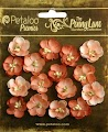 Petaloo: Antique Peach - Forget me Nots 16 pc