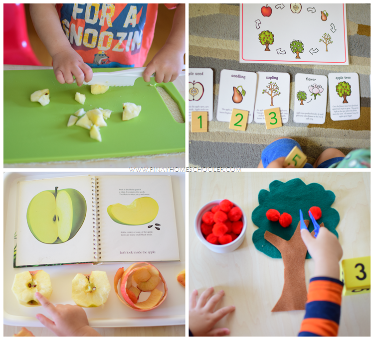 MontessoriSimpleAppleActivities