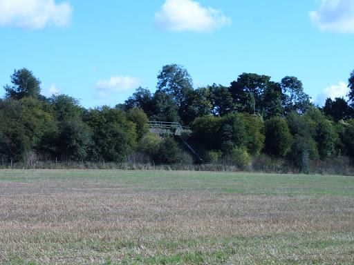 field and railway bridge