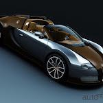 Bugatti Veyron Grand Sport Vitesse (9).jpg