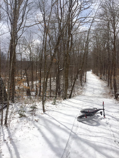 Moment of sunshine while fat biking on the frozen ski trails covered with a dusting of fresh snow. April 8th, 2016.