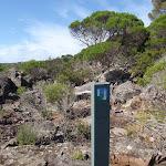Light to Light track post near Hegartys Bay (106399)