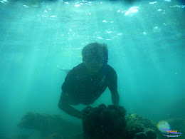 pulau pari, 23-24 mei 2015 02