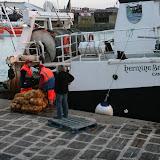 Quai de Dinan : pêche à la coquille Saint-Jacques