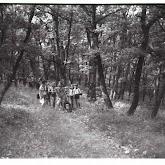 n029-002-1966-tabor-sikfokut.jpg