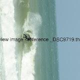 _DSC9719.thumb.jpg