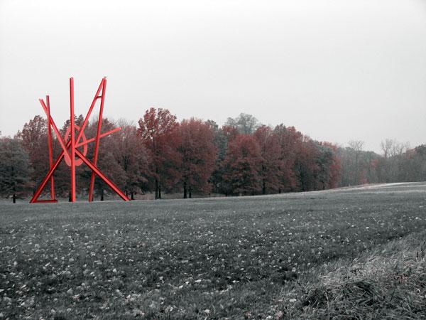 Winter Selections - IMG_9171.jpg