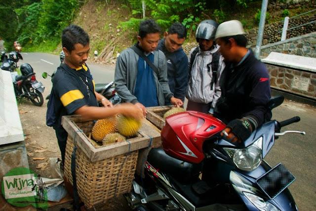 Tempat jual durian dan manggis dari Kaligesing, Purworejo, Jawa Tengah dengan harga murah