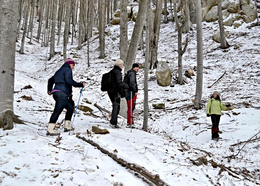 traseu asezari rupestre muntii buzaului iarna