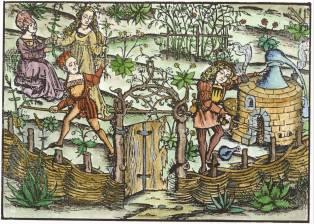 From Hieronymus Braunschweig Das Buch Zu Distillieren, Alchemical And Hermetic Emblems 2
