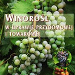 """Jerzy Lisek """"Winorośl w uprawie przydomowej i towarowej"""", Hortpress, Warszawa 2007.jpg"""