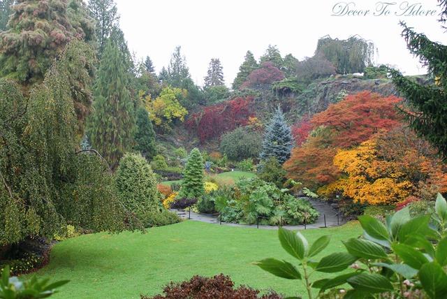 Queen Elizabeth Park 093-001