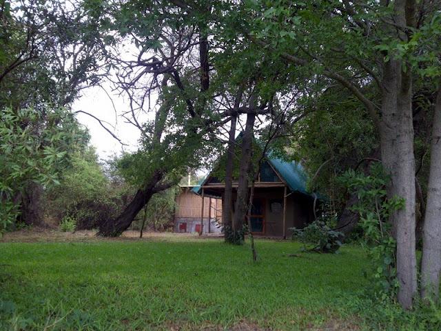 Our cabin during language week in Shakawe