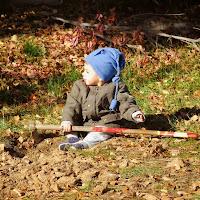 Plantación en el Parque de los Alcornoques - 24 de noviembre de 2013