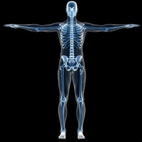 عيادات طب وجراحة العظام بمستشفى الياسمين بالمعادي