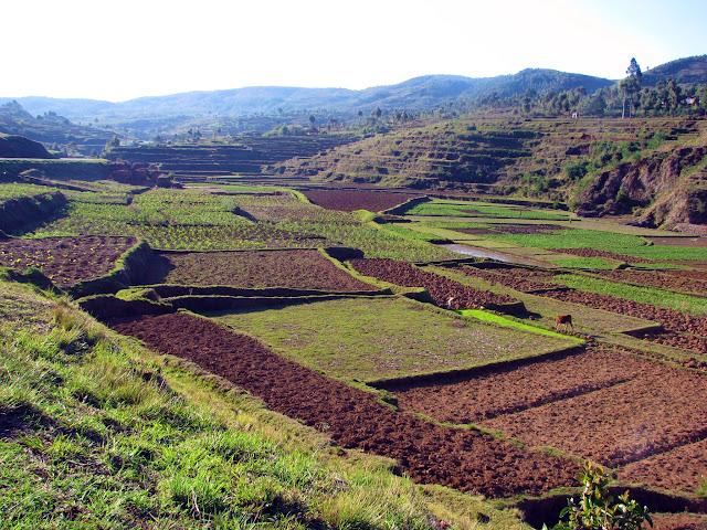صور من مدغشقر Madagascar 14725833367