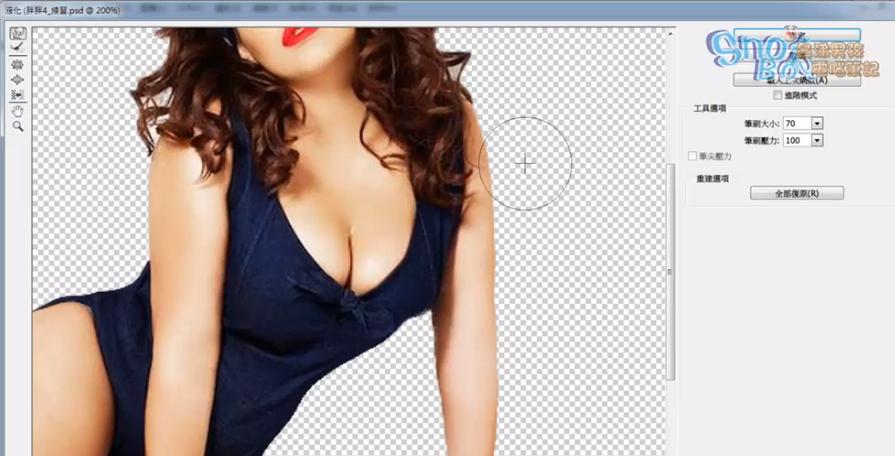 Photoshop設計實務全攻略 模特兒減肥術