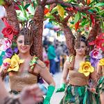 CarnavaldeNavalmoral2015_264.jpg