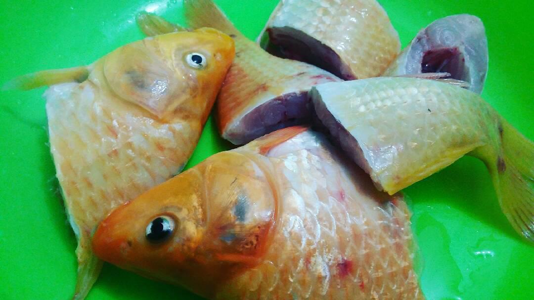 Tutorial Cara Memasak Ikan Arsik Yang Enak The Zhemwel