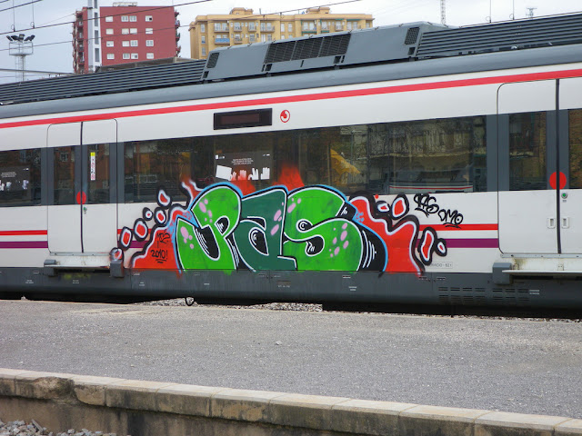 pas civia 2010