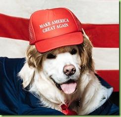 trump-dog-1