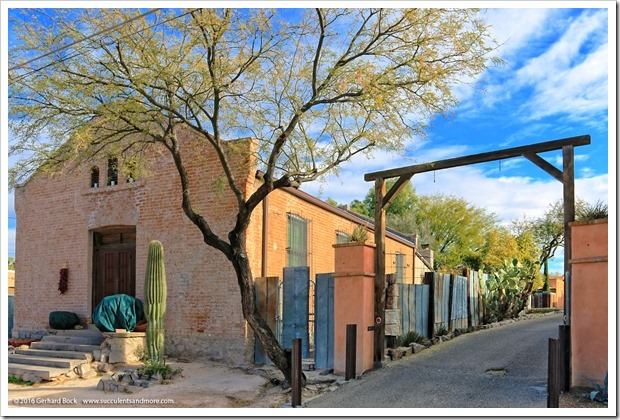 151229_Tucson_0015
