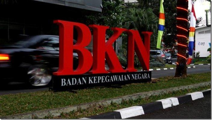 cpns bkn 2019