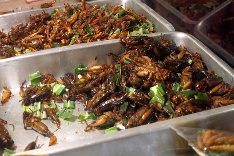 Fried crickets and grubs