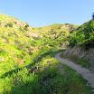 santiago-oaks-IMG_0435.jpg