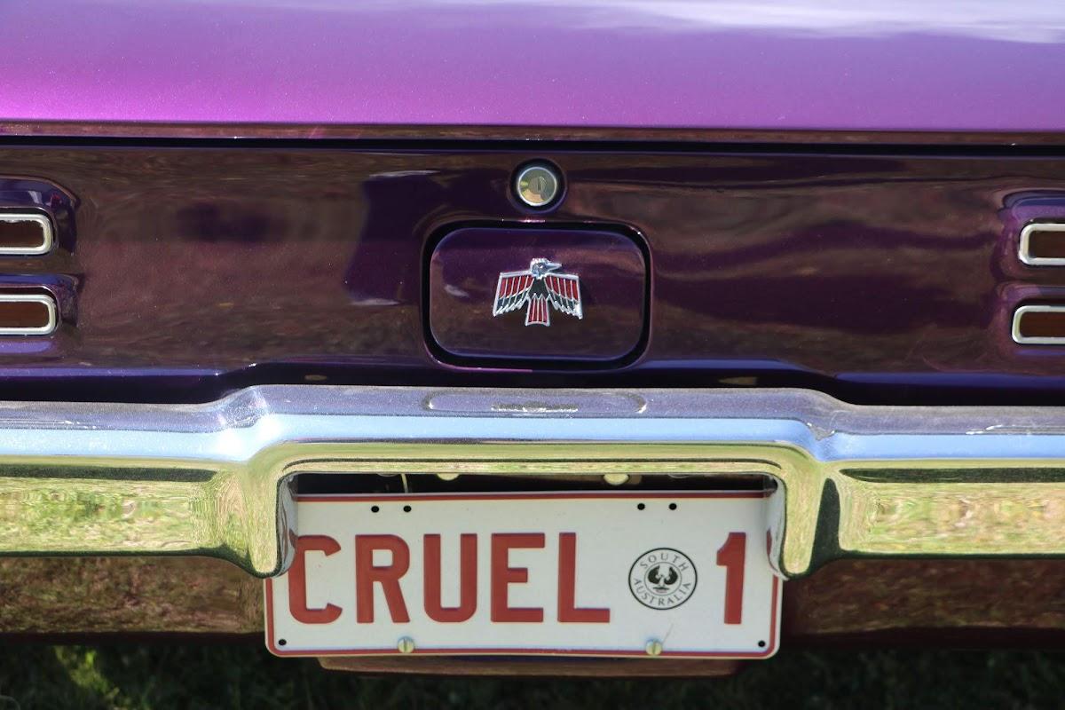 Pontiac GTO - Cruel 1 (16).jpg