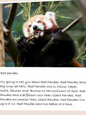 panda page 4