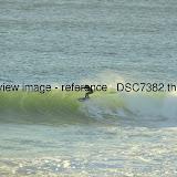 _DSC7382.thumb.jpg