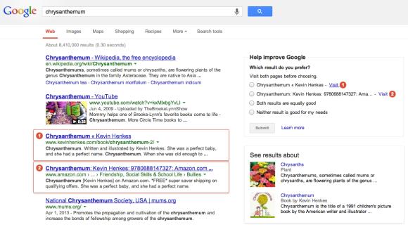Google Websuche Bewertung
