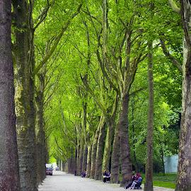 by RAJ (Constantinescu) Kapoor (Adrian Radu) - City,  Street & Park  City Parks