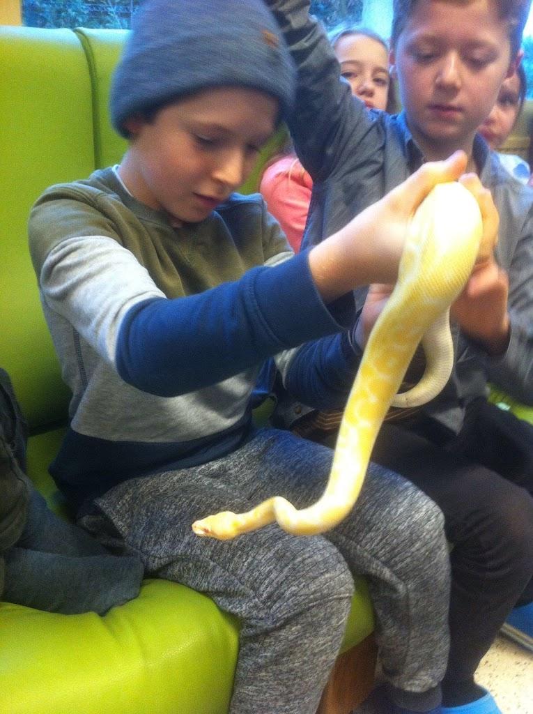 Slangen op bezoek bij de Kikkers - IMG_9214.JPG