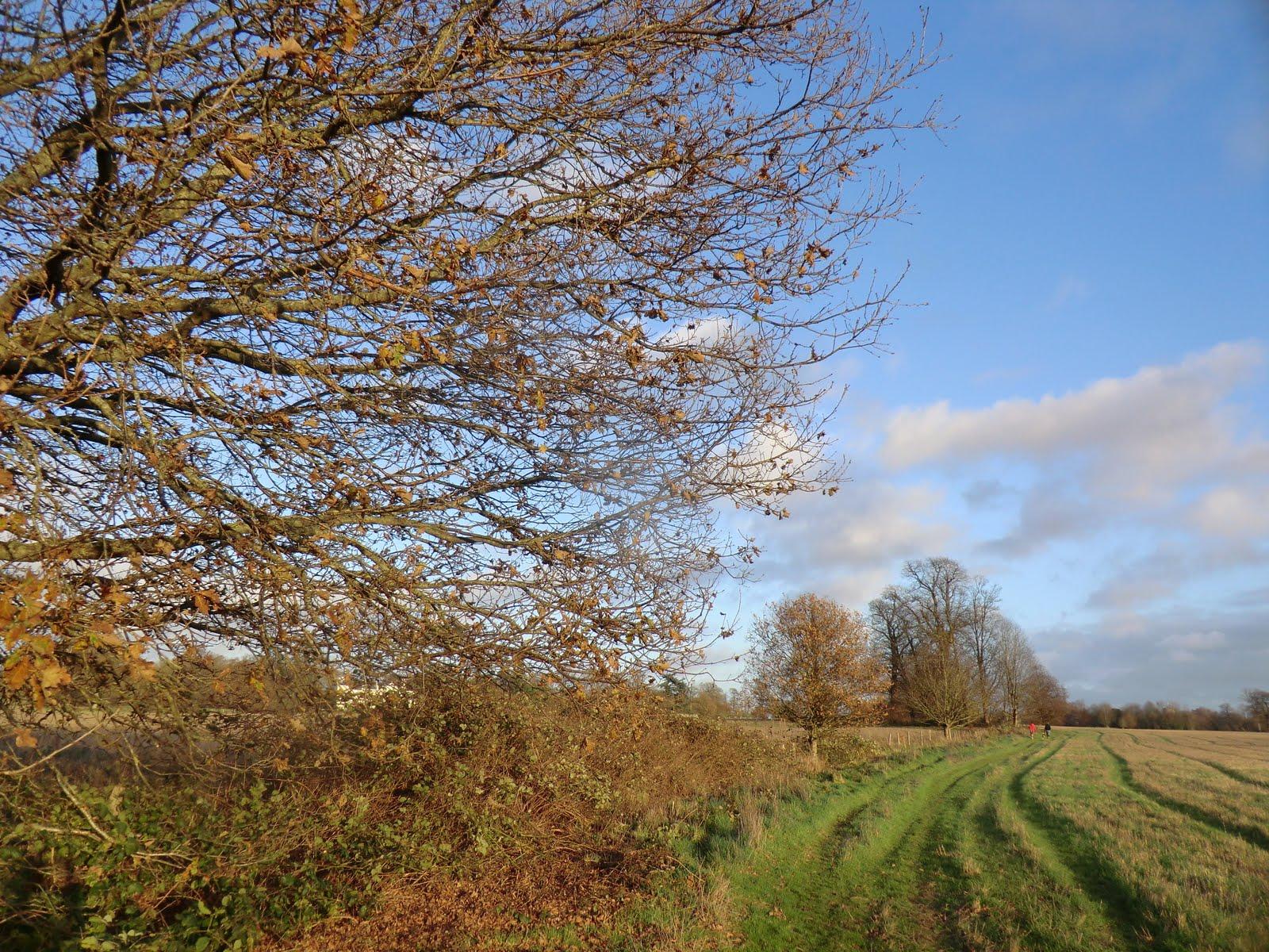 CIMG1775 Path to Ashurst Manor
