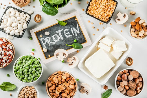 plant based protein hubtainment