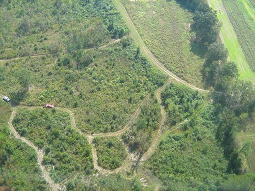 Aerial Shots Of Anderson Creek Hunting Preserve - tnIMG_0391.jpg