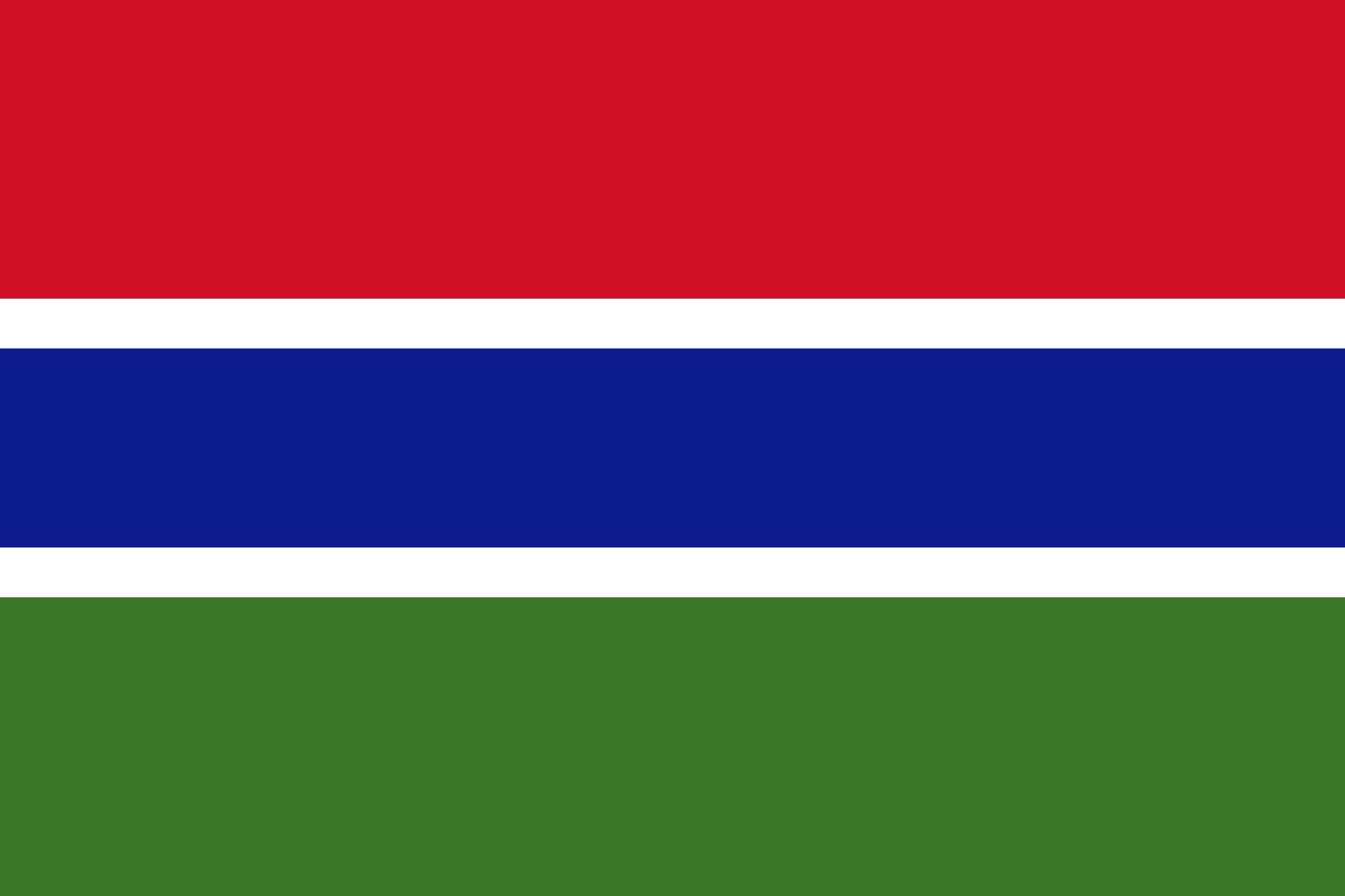 파일:감비아 국기.png
