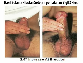 hasil+sebelum+dan+sesudah+menggunakan+vigrx+plus Jual Vigrx Plus Original, VigRX Plus Asli, Agen VigRX Plus Indonesia, Distributor VigRX Plus, Obat Pembesar Penis