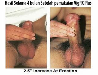 Obat Pembesar Penis VIGRX PLUS