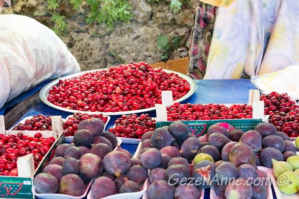 Bursa, Uludağ yolundaki tarihi İnkaya Çınarı'ndaki satıcılar