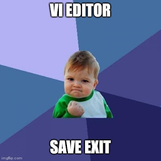 vi editor save and quit